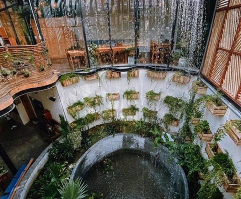 Quán cà phê 'rừng mưa nhiệt đới' ở Nha Trang